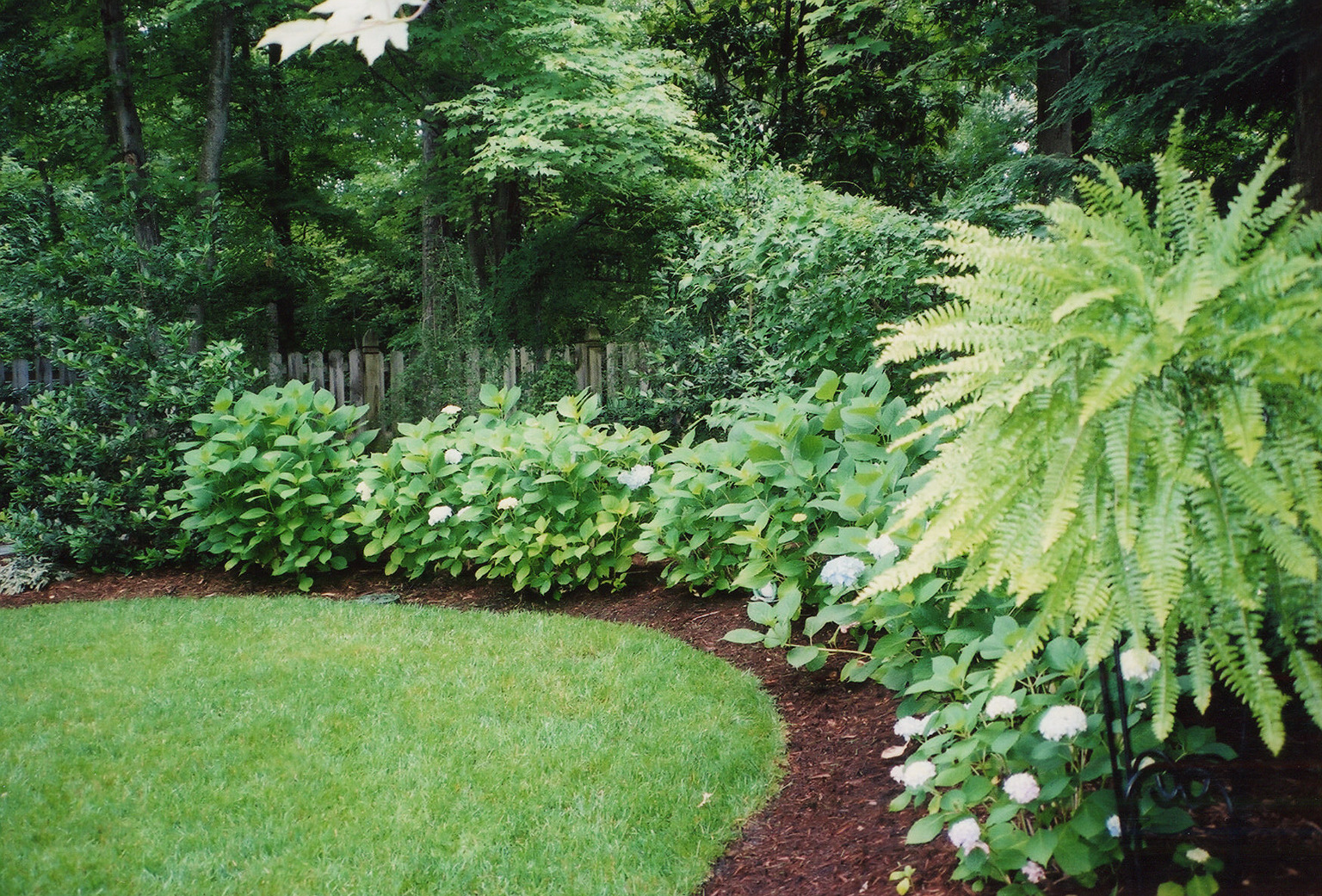 planting services, shrub planting services